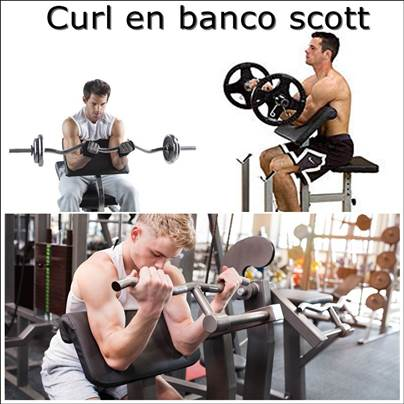 curl en banco scott