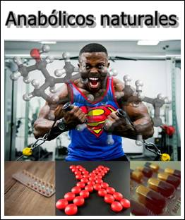 anabolicos-naturales